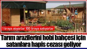 Tarım arazilerini hobi bahçesi için satanlara hapis cezası geliyor