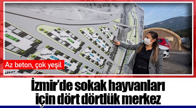 İzmir'de sokak hayvanları için dört dörtlük merkez
