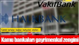 Kamu bankaları gayrimenkul zengini: Satılık tarlalar, bağlar, bahçeler, oteller…