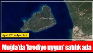 Muğla'da 'krediye uygun' satılık ada